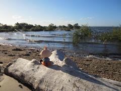 モザンビークの海岸で
